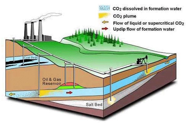 Diagram of how Carbon Capture and Storage (CCS) works. Image courtesy Pembina Institute and Alberta Geological Survey.