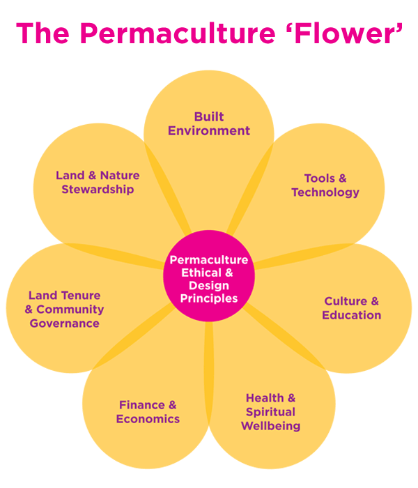 "Permaculture pioneer David Holmgren likens the system to a flower, with individual disciplines, the ""petals,"" connected at the centre by a unified philosophy of sustainable design."
