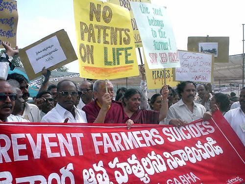 Demonstration against Monsanto in Hyderabad, India in 2003. Photo by Naoko Yatani courtesy of Flickr user skasuga.