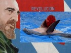 Fidel and Dolphin