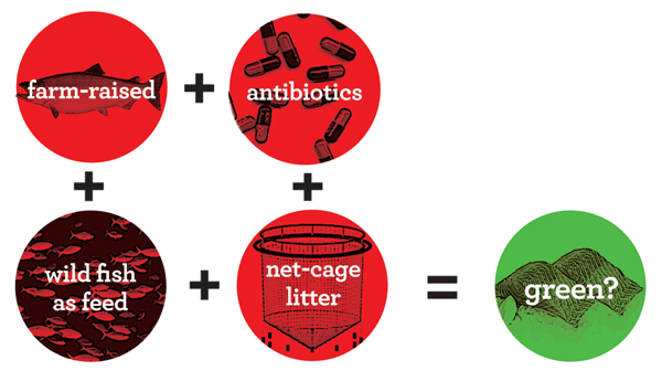 farm-raised + antibiotics + wild fish as feed + net-cage litter = organic?