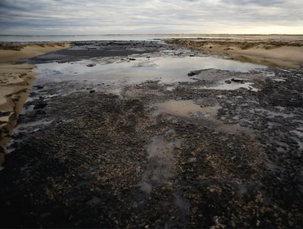 essays on oil sands