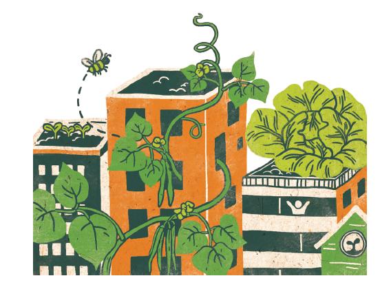 Illustration by Caitlin Taguibao